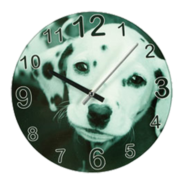 hunde und katzen wanduhr aus glas 30 cm rund analoge wand uhr ebay. Black Bedroom Furniture Sets. Home Design Ideas
